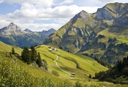 Bregenzwald