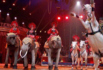 Zirkusfestival Monte Carlo
