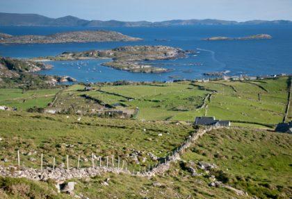 Weinderreise Irland